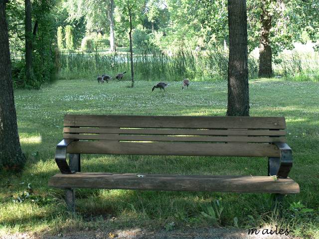 Design jardin romantique habbo roubaix 2723 jardin de for Jardin japonais tunis