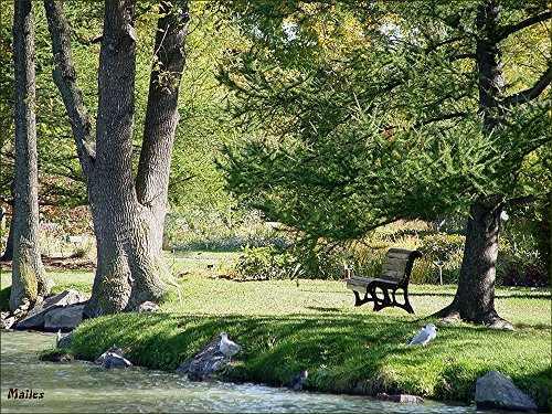 Bancs du jardin botanique de montr al for Botanique jardin montreal