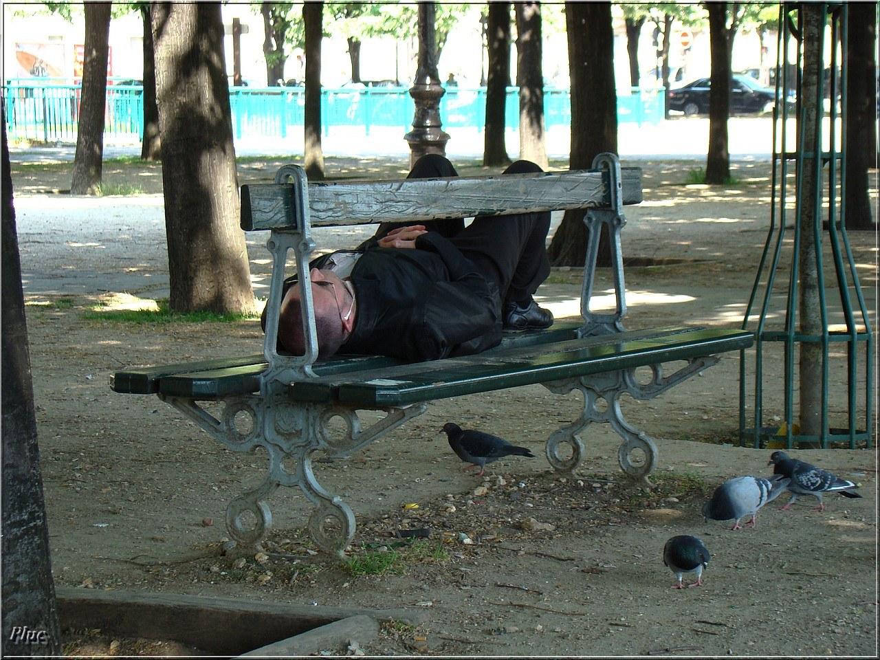 Bancs De Paris 9 Invalides Champs Elys 233 Es Et Tour Eiffel