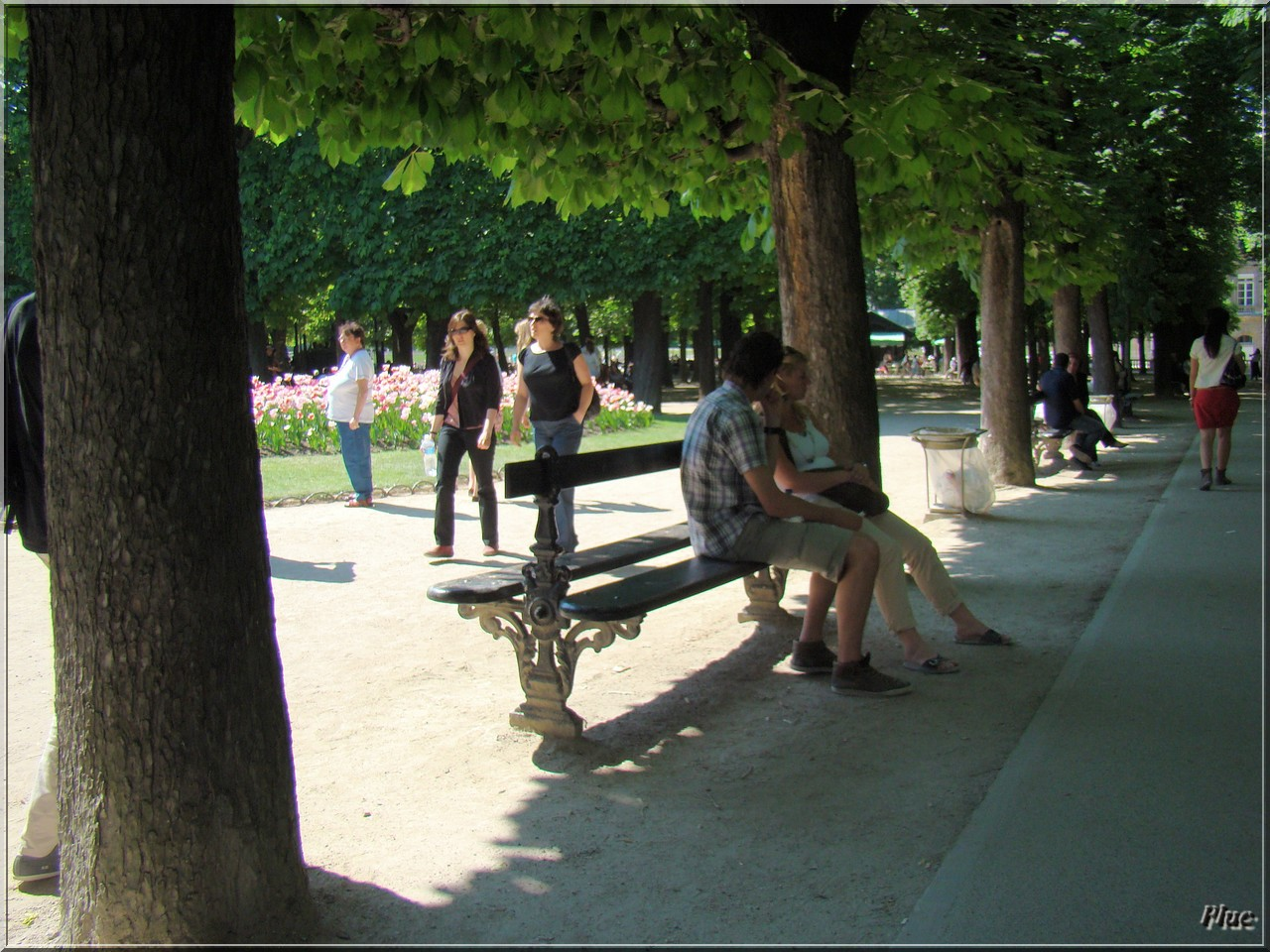 bancs de paris 11 jardin des plantes et jardin du lucembourg. Black Bedroom Furniture Sets. Home Design Ideas