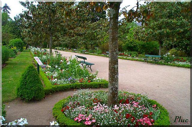 jardin botanique de tours ses fleurs ses bancs. Black Bedroom Furniture Sets. Home Design Ideas