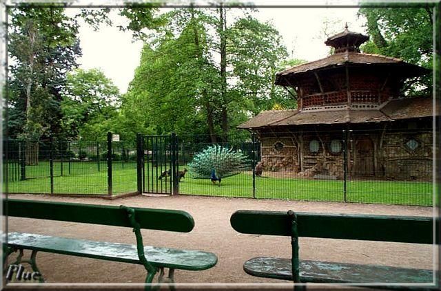 Pin jardin de fleurs on pinterest for Jardin botanique tours